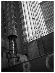 Free as a bird, Manhattan 1996.